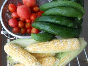 広島、福山から届いた野菜